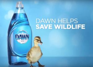 www.dawndishsweeps.com